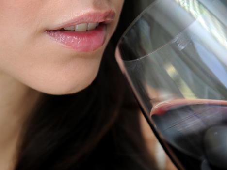 Nemzetközi borturisztikai díjat nyert a Taste Hungary