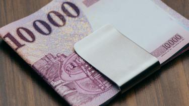 50 millió forintra is pályázhatnak a pécsi vállalkozások ősztől