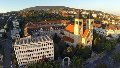 Csaknem kétszáz színes programmal várja a közönséget a Pécsi Tudományegyetem Irány a PTE! Kultúrfeszt című online rendezvénye